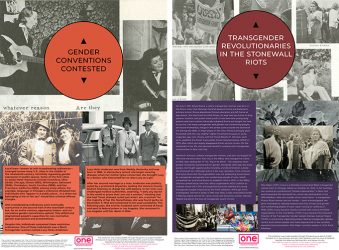 road-to-the-stonewall-riots